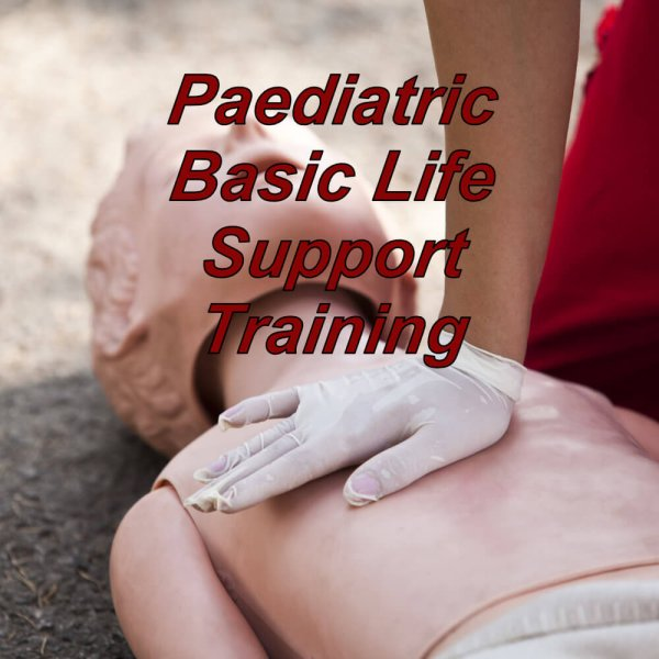 Paediatric basic life support training online, cpd certified healthcare bls course