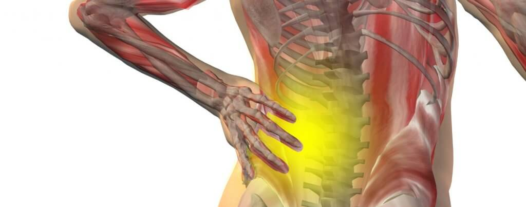 CPR training course online suitable for Chiropractors